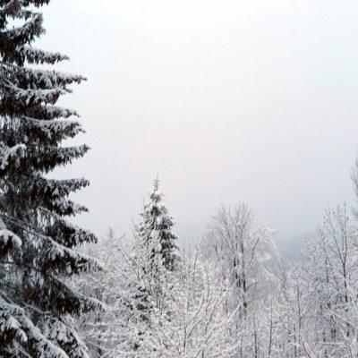 Der Blick aus dem Fenster ist vielversprechend: Über Nacht ist Berchtesgaden zum Winter-Wonderland geworden.