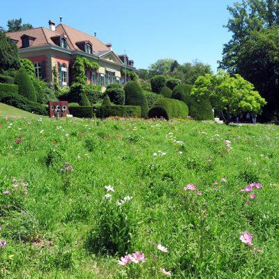 Das Olympische Museum liegt in einem hübschen Garten.